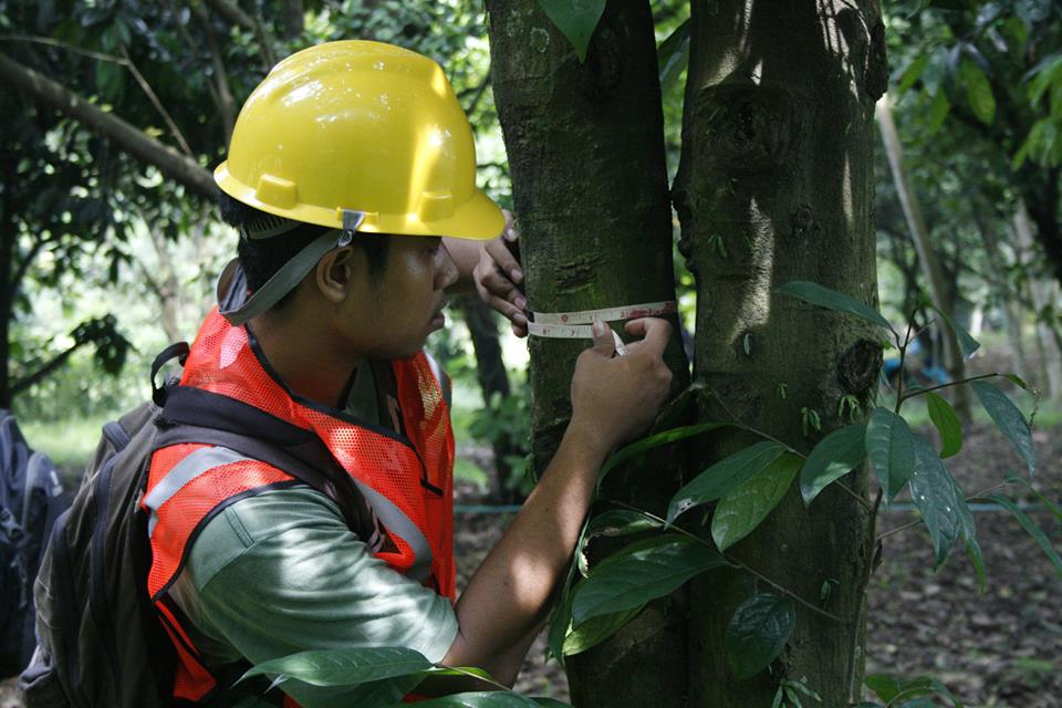 IPB Carbon Count 2015 | Forest Management Students' Club